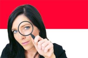 indoleaks.org | indoleaks.com | indoleaks.net | indonesian wikileaks